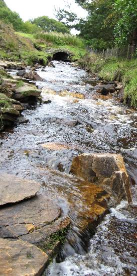 The burn in Ramshaw